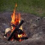 21 Best to Worst firewood to Burn Chart-Bestaxeguide