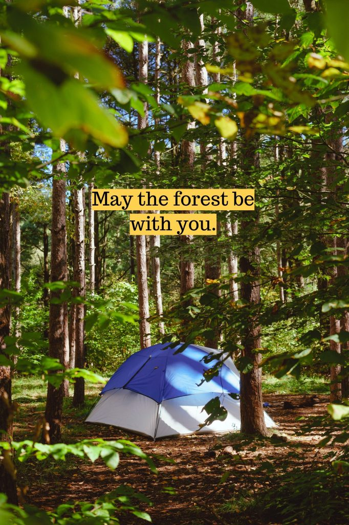 tent-quotes